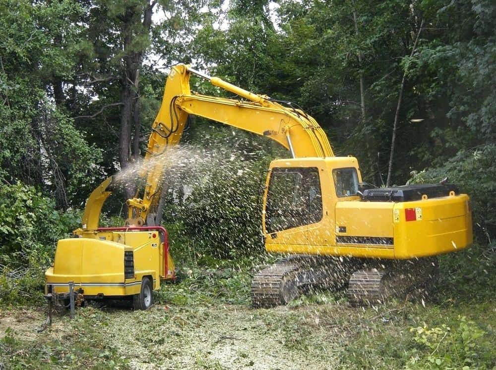 commercial tree service in Knoxville TN clearing business lot