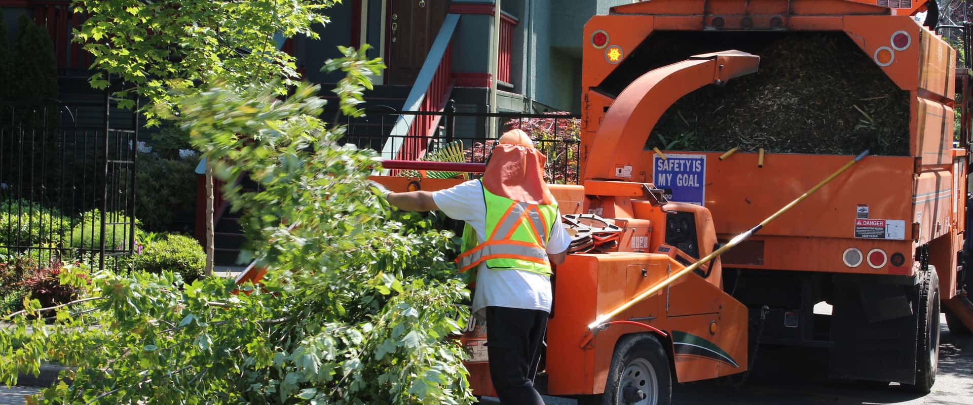 best-local-tree-services-knoxville-tn