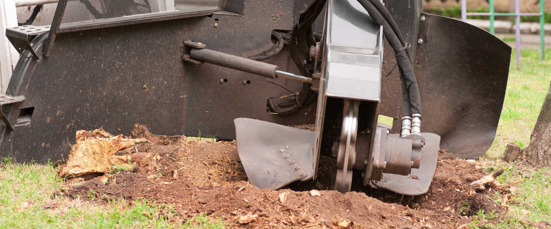best-stump-grinding-knoxville-tn